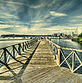 Cardiff Bay Wetlands by Steve Purnell