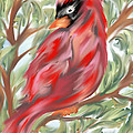 Cardinal At Rest by Laurie Pike