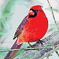 Cardinal In Ice Tree by Bonnie Griest