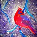 Cardinal In Snow by Sue Jacobi