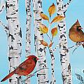 Cardinals Among The Birch-d by Jean Plout