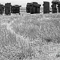 Carhenge - 15 by Gregory Dyer