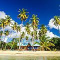 Caribbean Beach Shack by Jess Kraft
