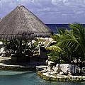 Caribbean Breeze Four by Ken Frischkorn