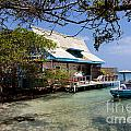 Caribbean House And Boat by Jannis Werner