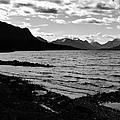 Cariboo Lake British Columbia Canada by Barbara St Jean