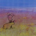 Caribou On The Tundra by Carolyn Doe