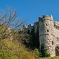 Carisbrooke Castle by David Ross