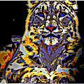 Carlos The Snow Leopard by Wendie Busig-Kohn