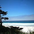 Carmel Beach California Usa by Joyce Dickens