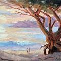 Carmel Beach Winter Sunset by Karin  Leonard