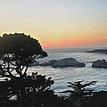 Carmel's Scenic Beauty by Kristina Deane