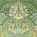 Carnations Design by William Morris
