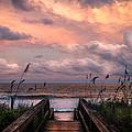 Carolina Dreams by Karen Wiles