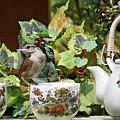 Carolina Wren And Tea Cups by Luana K Perez