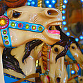Carousel by Chanel Fernandez