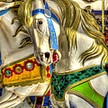 Carousel Charger by Wayne Sherriff