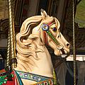 Carousel Dreams by Liz Marr