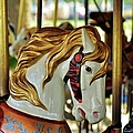 Carousel Horse 1 by Jean Goodwin Brooks