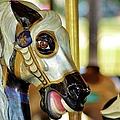 Carousel Horse 2 by Jean Goodwin Brooks