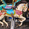 Carousel Horse Equ465622 by Dean Wittle
