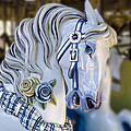 Carousel Horse by Gej Jones