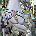 Carousel Horse Historic Smithville Nj by Terry DeLuco