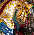 Colorful Carousel Merry-go-round Horse by Jerry Cowart