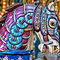 Carousel Horse by Mimi Ditchie