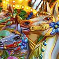 Carousel Horses by Dutourdumonde Photography