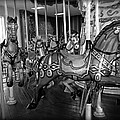 Carousel Horses In Black And White by Alice Gipson