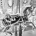 Carousel In Negative 3 by Rob Hans