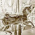 Carousel In Negative Sepia by Rob Hans