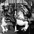 Carousel by Sharon L Stacy