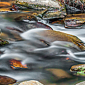Carreck Creek Cascades by Optical Playground By MP Ray