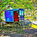 Amish Carriage by Carlos Diaz