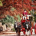 Carriage Ride by Shari Nees
