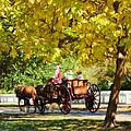 Horse Drawn Carriage Ride Williamsburg Va by Ola Allen