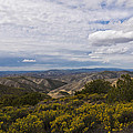 Carrizo Canyon by Mike Herdering