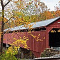 Carrollton Covered Bridge by Steve Harrington