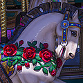 Carrsoul Horse With Roses by Garry Gay