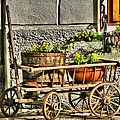 Cart And Flowers In Slovenia by Greg Matchick