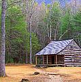 Carter Shield's Cabin II by Jim Finch