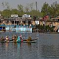 Cartoon - Ladies On 2 Wooden Boats On The Dal Lake With The Background Of Houseboats by Ashish Agarwal