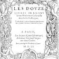 Cartouche, 1551 by Granger