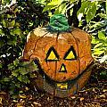 Carved Pumpkin 5 by Dennis Coates