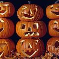 Carved Pumpkins  by Jim Corwin