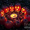 Carved Pumpkins With Pumpkin Pie by Jim Corwin