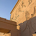 Carved Wall Of The Temple  Philae  by Jaroslav Frank