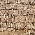 Carvings At The Temple Of Karnak by Sophie McAulay